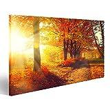 Bild Bilder auf Leinwand Herbst Herbst Park herbstliche Bäume und Blätter in Sonnenstrahlen Wandbild, Poster, Leinwandbild MZJ