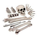 Boland 74,391 - Kit de esqueleto, 12 de hueso
