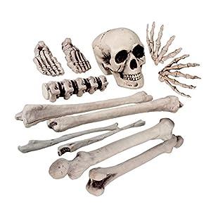 Boland 74391 - Skelett Bausatz, 12 Knochen