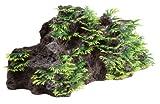 Fluval Vordergrund Rock Aquarium Ornament