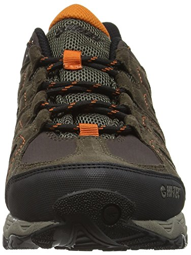 Hi-Tec Signal Hill Waterproof, Chaussures de Randonnée Basses Homme Marron (Dark Chocolate/dark Taupe/burnt Orange 041)