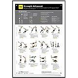 Suspensión Póster de ejercicios Vol. 2 – para TRX, WOSS, y ...