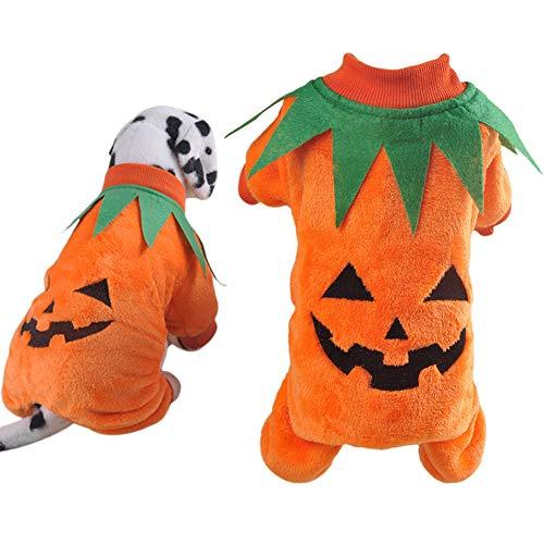 LCWYP Haustier Halloween Halloween-Haustier-Kostüm-Kreatives Nettes Kürbis-Haustier-Kleid-Hundekostüm-Hundekleidung-Neuheit-Lustiges - Nette Und Kreative Kostüm