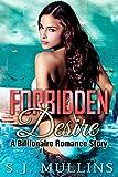 Forbidden Desire: A Billionaire Romance Story (New Adult Romance Book 1)