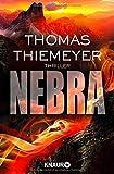 Nebra: Thriller (Hannah Peters, Band 2)