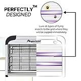 ᐅ Aspectek UV Insektenvernichter - 2