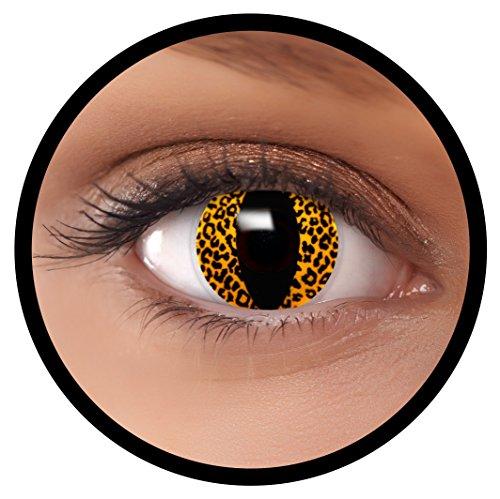 FXEYEZ® Farbige Kontaktlinsen gelb Leopard + Linsenbehälter, weich, ohne Stärke als 2er Pack - angenehm zu tragen und perfekt zu Halloween, Karneval, Fasching oder ()