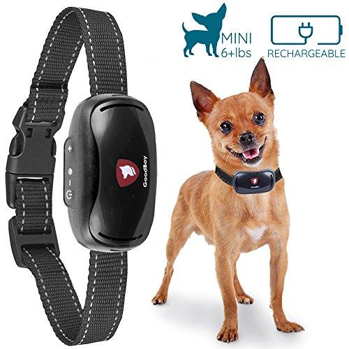 GoodBoy Mini Vibrationshalsband für kleine Hunde - wiederaufladbar und wasserdicht Kontrolle von übermäßigen Bellen mit diesem einfachen und effektiven Antibell Halsband für kleine und mittlere Hunde ab 2,5kg und 12cm-48cm Halsumfang Sicher und human ohne Shock (Kragen Hund Bellen Schock)