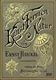 2019 Wall Calendar [12 pages 20x30cm] Ernst Haeckel Kunst Formen Natur Vintage Book vol 2 Posters