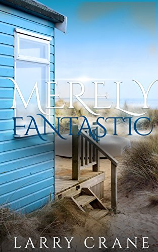 Merely Fantastic: A Short Story (English Edition) Flat Port