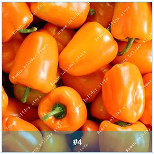 Galleria fotografica Go Garden Zlking 100 Pz Chili Bonsai Alto tasso di germinazione Facile da coltivare Peperone Verdura Fresco organico Paprika Spezie Impianto: 4