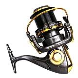 XUEYAN Spinning Fishing Reel 12 + 1 Bearings Left Right Manija Intercambiable para Agua Salada Pesca de Agua Dulce con Doble Sistema de Freno de Arrastre (Tamaño : 11000)