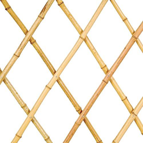 Sti traliccio in bamboo naturale grigliato estensibile 200x200 cm per piante e fiori