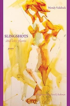 Slingshots and Love Plums: Poems by Wendy Videlock (English Edition) di [Videlock, Wendy]