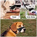 HomeChi Dog Muzzle?Dog Head Collar Muzzle Anti-Pull Lead/Halter/Head Collar/Harness?Black by HomeCHI