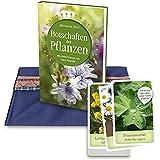 Botschaften der Pflanzen: Kartenset: Kartenset und Buch im handgenähten Täschchen