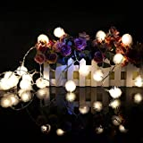 Ascension ® LED String Strip Ladi Warm White 20 PomPom Indoor Outdoor Decoration Lights 4 Meter LONG Remote Control Modes - Diwali/Festival/Wedding/Gifting/Xmax/New Year (Pack Of 1)