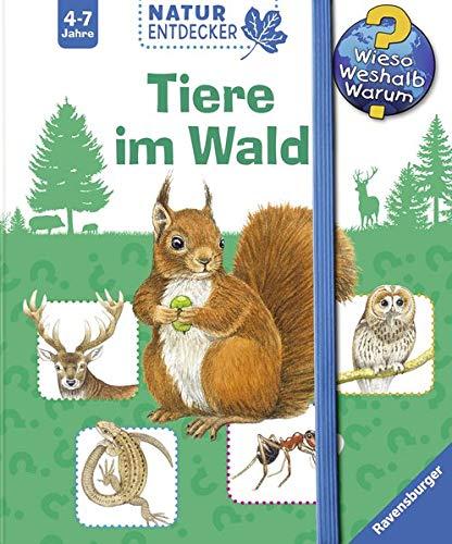 Tiere im Wald (Wieso? Weshalb? Warum? Natur-Entdecker)