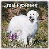 Great Pyrenees - Pyrenäenhunde 2020 - 16-Monatskalender mit freier DogDays-App: Original BrownTrout-Kalender [Mehrsprachig] [Kalender] (Wall-Kalender)