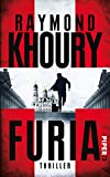 Furia: Thriller (Sean Reilly)