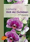 Fabelhafte Welt der Orchideen: Alles über Pflege, Vermehrung und die besten Arten
