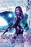 The Gate at the Grey Wolf Star: Volume 1 (Perseus Gate)