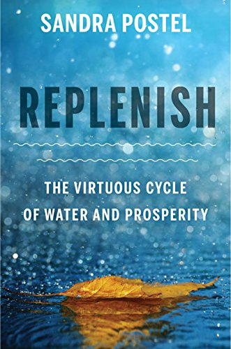 Replenish: The Virtuous Cycle of Water and Prosperity por Sandra Postel