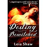 Destiny Bewitched (Shadows of Destiny Book 4) (English Edition)