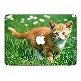 Katzen 10011, Braune Katze, Skin-Aufkleber Folie Sticker Laptop Vinyl Designfolie Decal mit Ledernachbildung Laminat und Farbig Design für Apple MacBook Pro Retina 15