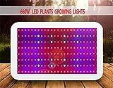 DZW LED coltiva lo spettro pieno della luce 600W coltiva la lampada per piante interne idroponiche di serra veg e fiore (bianco) High quality
