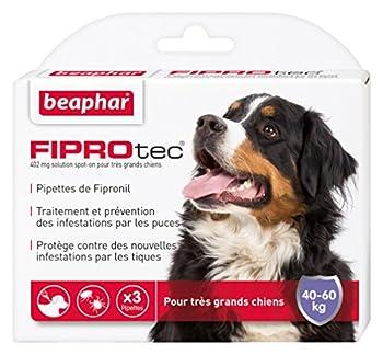 Beaphar - FIPROtec, pipettes anti-puces et anti-tiques au Fipronil - très grand chien de 40 à 60 kg - 3 pipettes