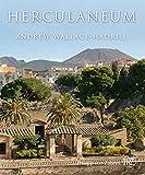 Herculaneum: Biografie einer Stadt - Andrew Wallace-Hadrill