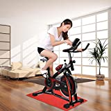 Best Fitness Spin Bikes - ReaseJoy 10KG Flywheel Spin Exercise Bike Indoor Aerobic Review