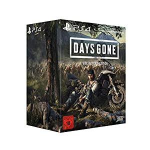 Sony Interactive Entertainment Days Gone