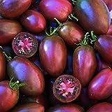 Eiertomate - Tomate - Ukrainian Purple- Ukranian - 20 Samen -