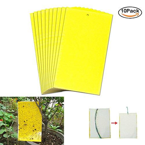 Double Face Jaune Sticky pièges papier tue-mouches Stickers pour plante 10 pcs 25 * 15 cm 10pcs 10 pièces