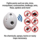 Terratek ECO Powerful Ultrasonic Pest Repeller Pest Control UK Plug In, Spider Repellent With Night Light Repel Rodents, Rats, Mice, Ants, Insects, Spiders, Flies, Moths, Dust Mites, Safe Alternative (TPR100 (2 PACK))
