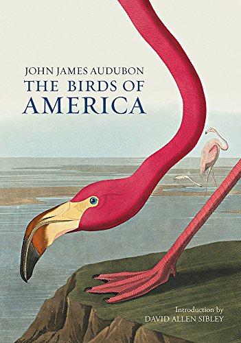 The Birds of America - Audubon Birds Of America