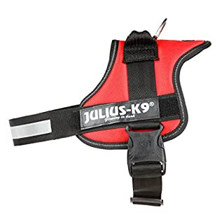 Julius-K9, 162R0, K9 Powergeschirr, Größe: 0, rot