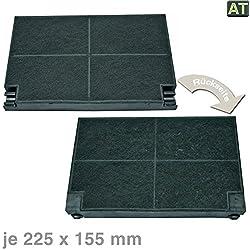 Vioks - Filtre à charbon actif pour hotte aspirante - Pour AEG Zanussi 5023298000 - 8 EFF55 - 225 x 155 mm