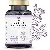 N2 Colágeno Marino Hidrolizado Magnesio Acido Hialurónico Vitamina C Suplemento Articulaciones, Piel Huesos. Colageno PEPTAN