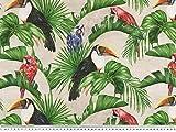 Zanderino ab 1m: Dekostoff, Digitaldruck,Tucane, Papageien