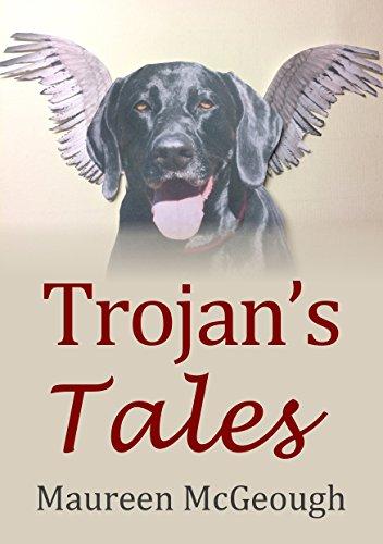 trojans-tales-english-edition