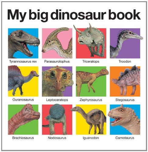 My Big Dinosaur Book