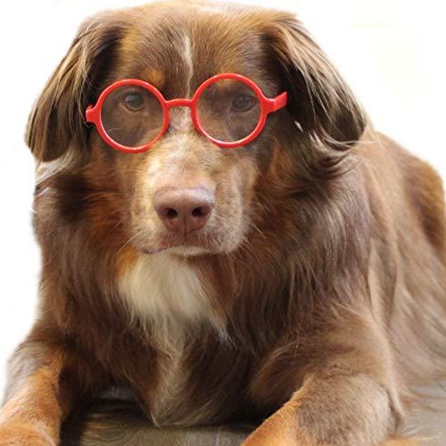 Style Vault G003 Hundesonnenbrille mit Transparenten Gläsern für alle mittelgroßen bis großen Hunde, Large, Red-Clear