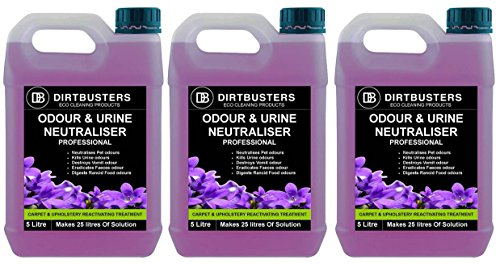 dirtbusters-professional-odeur-et-lurine-neutralisant-reactivating-enzyme-solution-desodorisant-conc
