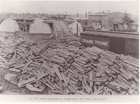 POSTER Rathbun Company's chemical works charcoal kilns Deseronto looking east. image originally published 'The Lumberman' 5 September 1891 Chicago . Horses carts visible raised walkway around kilns there Grand Trunk railway car right image. Piles wood burning kilns fill foreground. Deseronto eastern Ontario Canada Wall Art Print A3 replica