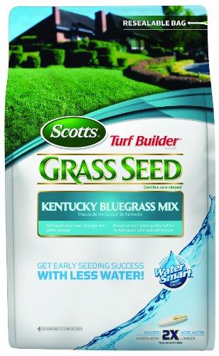 scotts-lawns-7-lbs-turf-builder-kentucky-bluegrass-seed-mix
