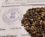 Las semillas orgánicas: 500 Semillas: Las semillas de cardamomo, semillas elettaria Cardamomum fresco de importación de la India por Farmerly