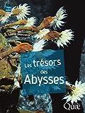 Image de Les trésors des abysses